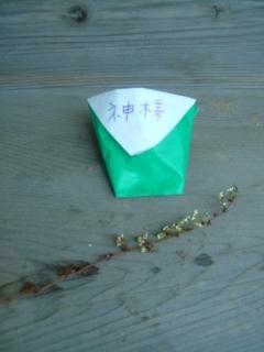 20090904_八幡神社・神様.jpg